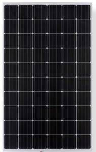 Photo of Longi Solar Panels